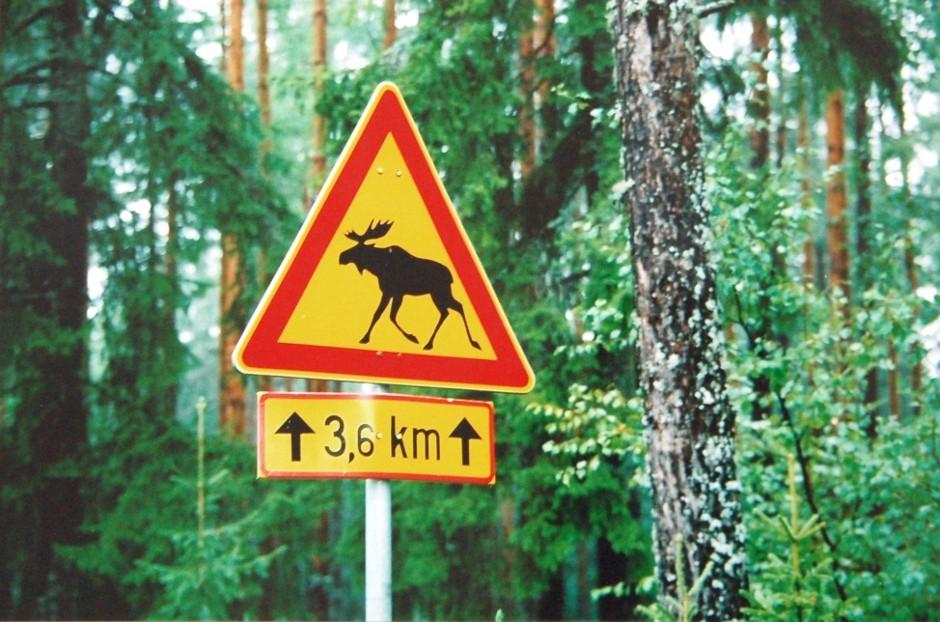 Finlande, Paasilinna